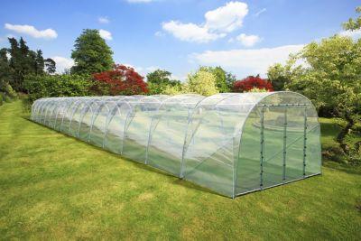 FVG professional gardening  RÖMI® 30 Folientunnel