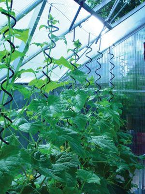 Pflanzenspirale für Gewächshäuser - 3 Stück