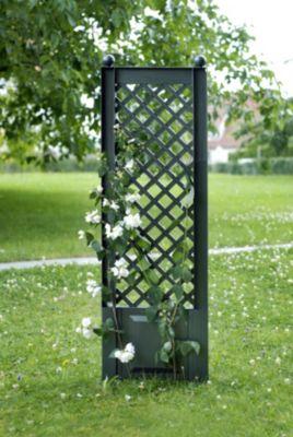 Spalier mit Erdspieß klein,grün