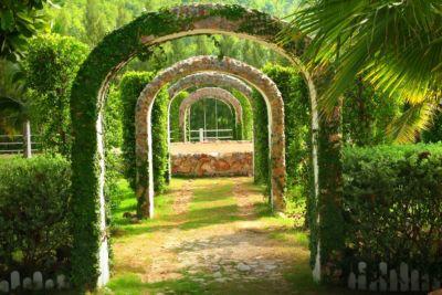 Pergola Garden Fototapete