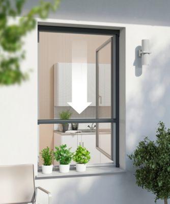 IS Plus Rollo Fenster 160 x 160 cm, anthrazit