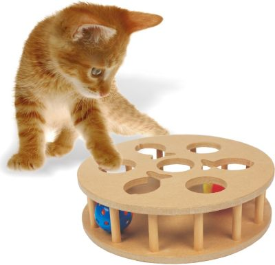 heim-cat-iq-trainer