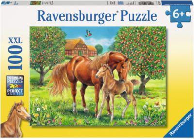 ravensburger-pferdegluck-auf-der-wiese