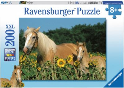 ravensburger-pferdegluck