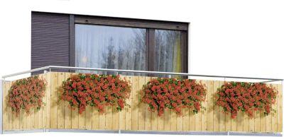 Sichtschutz Geranien für Balkon und Terrasse
