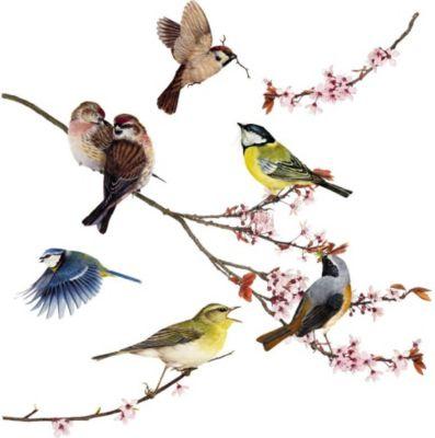 komar-freestyle Fenster-Sticker Birds, 31 x 31 ...