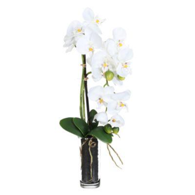 Kunstpflanze Phalaenopsis im Zylinderglas, 13,5x5,5 cm