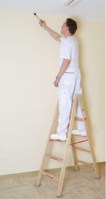 Euroline Holz Comfort Sprossen Stehleiter 2x4 Sprossen - Länge 1,20m   Baumarkt > Leitern und Treppen > Stehleiter   Holz   euroline