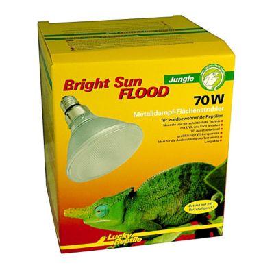 Bright Sun FLOOD Jungle - 70W