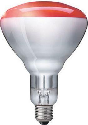 Infrarotstrahler Industrial Heat - Rot, BR125, E27 - 250W