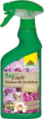 NEUDORFF - BioKraft Vitalkur für Orchideen AF -...