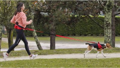 ZOLUX Sportler-Set für Hundefreunde - M