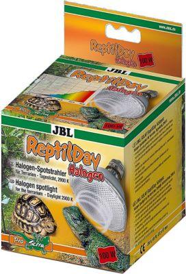 JBL ReptilDay Halogen - 100W