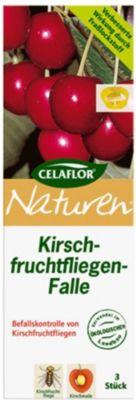 celaflor CELAFLOR® Naturen® Kirschfruchtfliegen-Falle, 1 Set