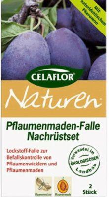 celaflor Celaflor Naturen Pflaumenmaden-Falle 1 Set