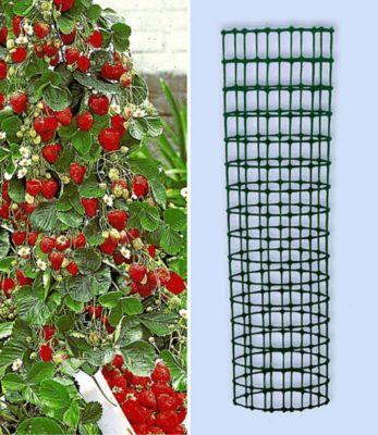 Baldur Garten Kletter-Erdbeere ´Hummi®´ und Dekorativer Rankturm;1 Set