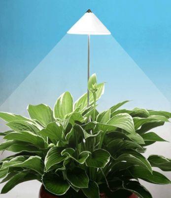 LED Wachstumslampe fürs Zimmer weiß´´, 7 Watt P...