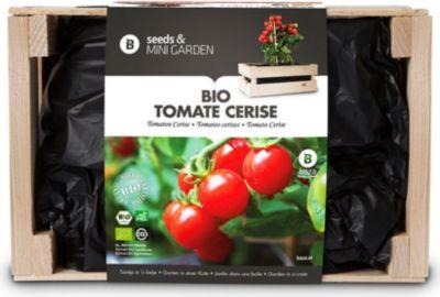 Mini-Garten BIO-Tomaten-Cerise,1 Kiste