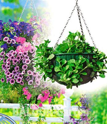 Baldur Garten Hanging-Basket, Hängeampel 37,5 cm Durchmesser