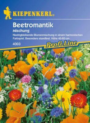 Kiepenkerl  Beetromantik Mischung Mega-Pack