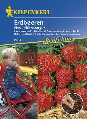 Kiepenkerl  Erdbeeren Elan, F1