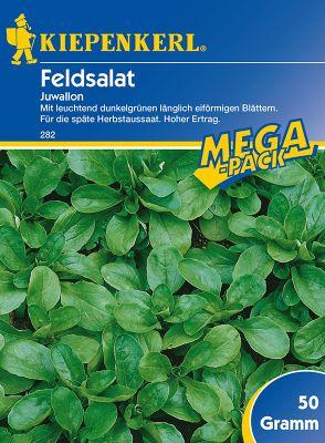 Kiepenkerl  Feldsalat ´Juwallon´ Mega-Pack