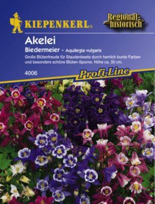 Kiepenkerl  Akelei Biedermeier