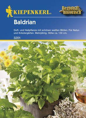 Kiepenkerl  Baldrian