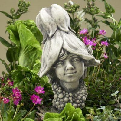 Country Garden  Blumenkind Abutilon