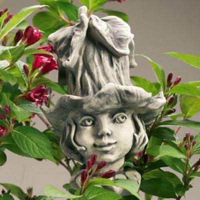 Country Garden  Blumenkind Glockenrebe