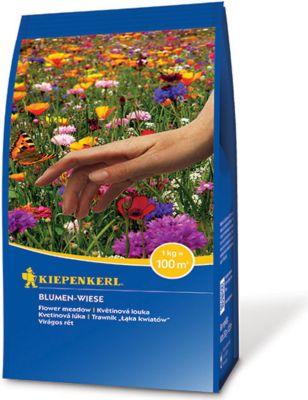 Kiepenkerl  Blumen-Wiese-250 g Pack