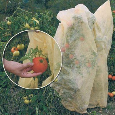 TOM-GARTEN Bio Tomatenvlies-Hauben- 3er Pack