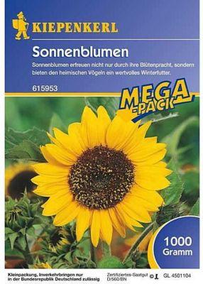 Kiepenkerl  Feldsonnenblumen 1kg