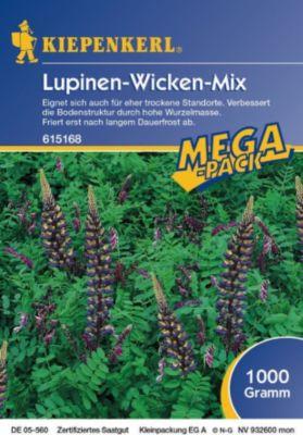 Kiepenkerl Lupinen-Wicken-Mix Gründünger