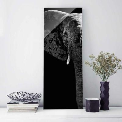 glasbild-afrikanischer-elefant-schwarz-weiss-panorama-hoch