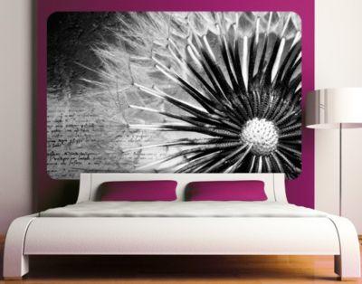 selbstklebendes-wandbild-pusteblume-schwarz-wei-