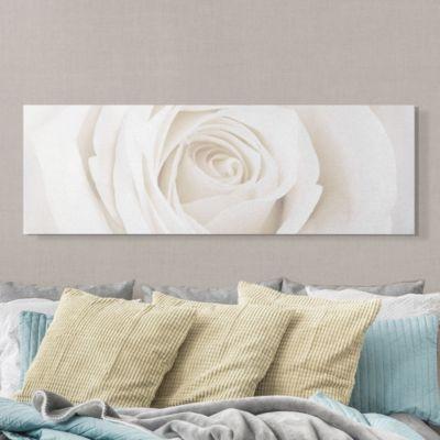 Rosen Leinwandbild - Pretty White Rose Panoramabild - Blumenbild