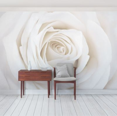 Fototapete Blumen - Feathery White Tulips - Tap...