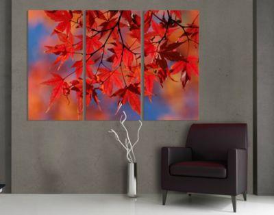 Leinwandbild Red Maple Triptychon