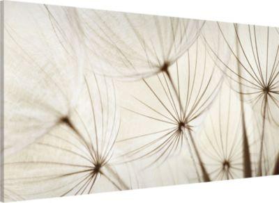 magnettafel-sanfte-graser-memoboard-quer-37cm-x-78cm