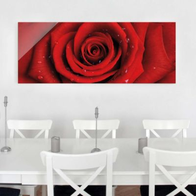 Glasbild - Rote Rose mit Wassertropfen - Panorama Quer - Blumenbild... 40cm x 100cm | Dekoration > Bilder und Rahmen > Bilder | Glas | PPS. Imaging