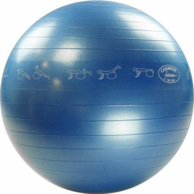 Carnegie Fitness Carnegie Gymnastikball Ø 65 cm Massageball Fitnessball Sitzball 300 kg + Pumpe