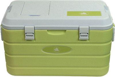 10T Fridgo 40 - Kühlbox passiv 40 Liter mit integriertem Kühl-Akku und Bodenablauf lemon 63x35x35cm