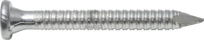 Ramses Ankernägel 4 x 50 mm Stahl verzinkt 250 Stück