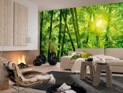 Fototapete Bamboo Forest