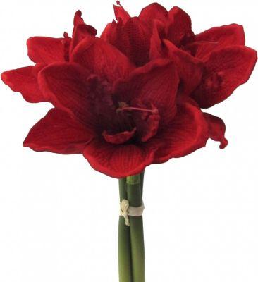 Künstlicher Amaryllis Bund in rot Kunstpflanze   Dekoration > Dekopflanzen > Kunstpflanzen   Rot   Fuchs seit 1895