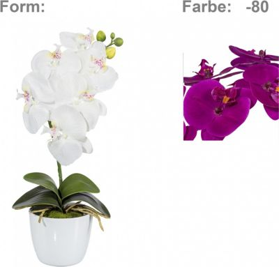 orchidee-phalaenopsis-kunstpflanze, 15.35 EUR @ plus-de