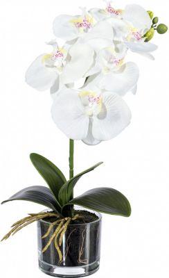 orchidee-phalaenopsis-kunstpflanze-im-glas