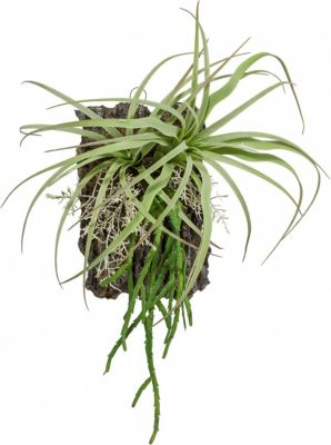 tillandsien-wandbild-kunstpflanze-auf-kunstrinde