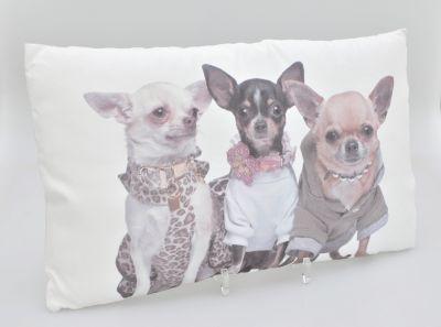 HTI-Living Zierkissen Chihuahuas